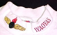 White Long Sleeve Shirt with Embroidered Collar