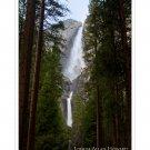 Grand Path to Yosemite Falls