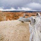 Heading Towards the Utah Wilderness