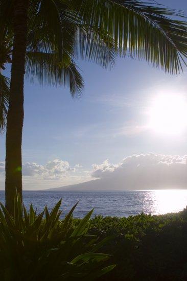 Overlooking Moloka'i