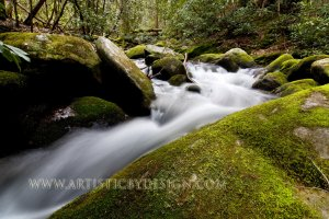 """A Swift Current in the Smokies - 20""""x 30"""" Signed Print"""
