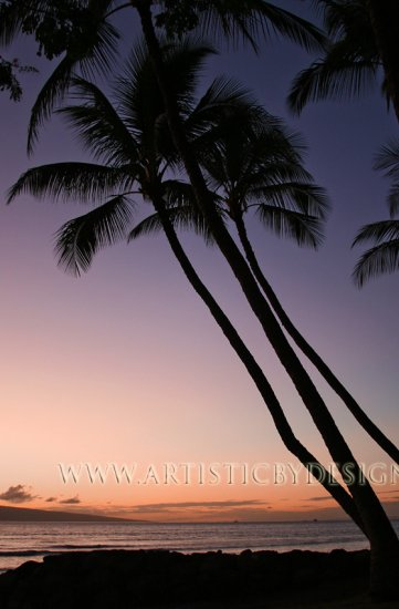 """Pacific Sunset - 20""""x 30"""" Signed Print"""
