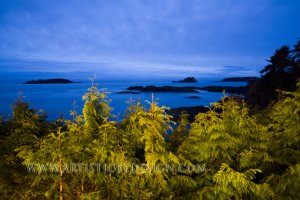 "Blues of the Pacific Northwest - 20""x 30"" Signed Print"