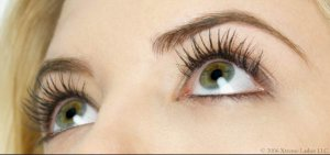 Luxury Lashes Fill