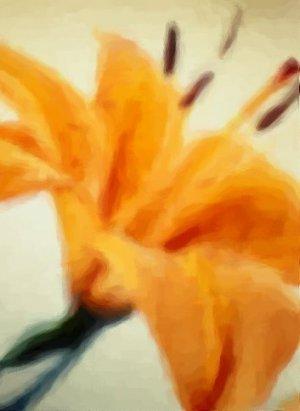 Asia Iris - Original Artwork by Sableux - 24x36