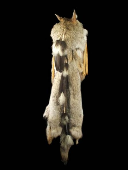 Native American Indian Shaman Warbonnet Headdress with Coyote Pelt