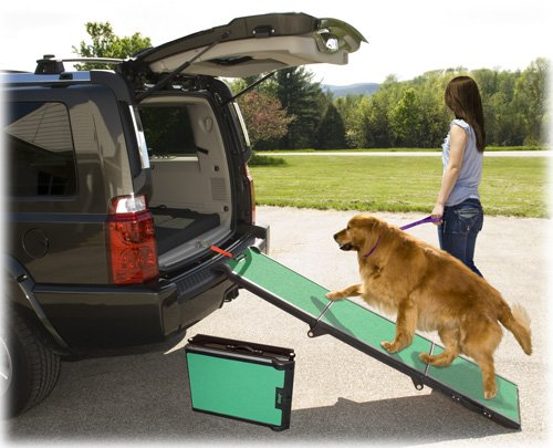 Pet Gear Portable Jeep Tri-Fold Dog Ramp - Green