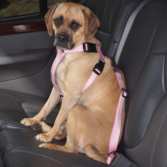 "Cruising Companion Auto Car Safety Dog Harness Small Medium 12""-28"" Blue, Black, Pink"