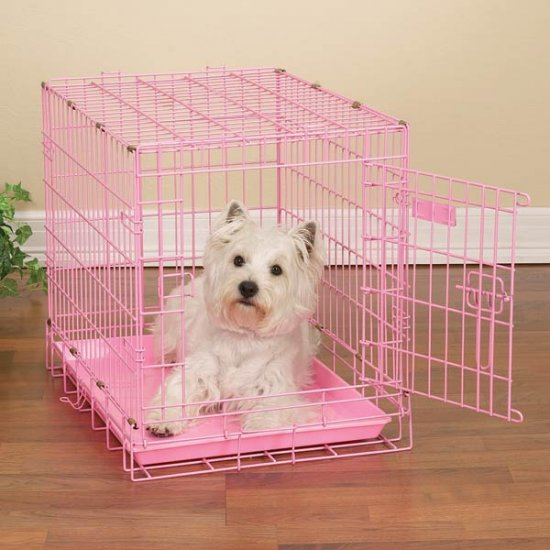"""ProSelect Fashioned Colored Wire Dog Crate Kennel Medium 30"""" Blue or Pink"""
