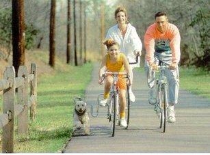 Springer Leash Bike Attachment Bicycle Control Dog Lead