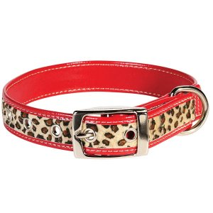 "14"" - 18"" Zack & Zoey Safari Dog Collar with 4 or 6 foot lead leash RED LEOPARD"