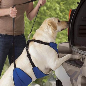 XXX-Large Guardian Gear Lift & Lead 4-In-1 Dog Support Harness Boosts Dogs