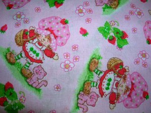 Strawberry Shortcake Shopping Cart Cover