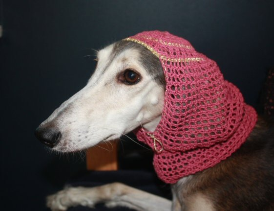 Harem snood - Dark pink