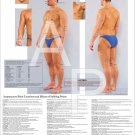 Dim Mak Striking Martial Arts Pressure Points Poster