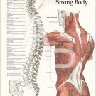 "Healthy Spine Strong Body Chiropractic Poster 18"" X 24"" Chart"