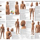 Acupuncture Meridian Point Locations Reference Poster 24 X 36 Wall Chart