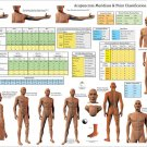 Acupuncture Meridians Points and Classifications Poster 24 X 36 Wall Chart