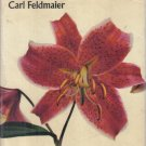 Lilies Carl Feldmaier  1970HC DJ