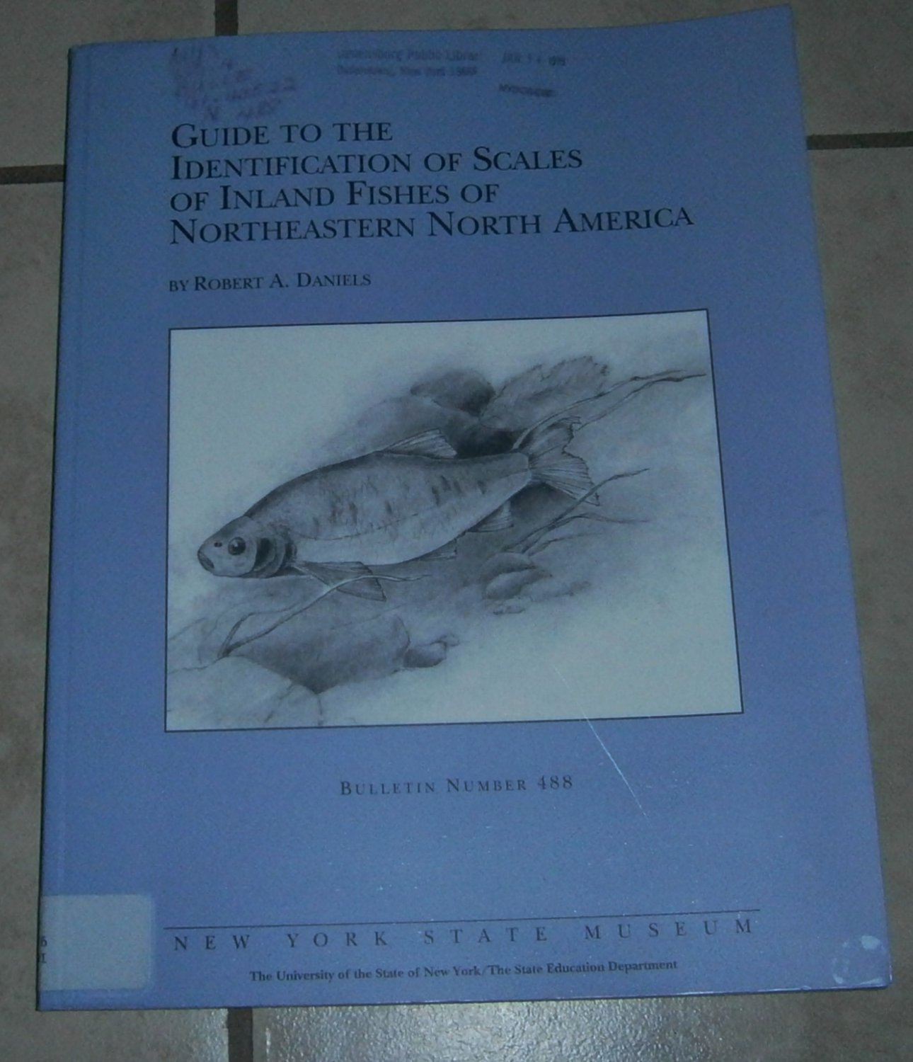 Guide to the Identification of Scales Inland Fishes of Northeastern North America