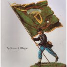 The Irish Brigade Steven J. Wright Soft cover Free S/H