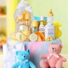 New Arrival Baby Fundamentals for Baby Gift Basket!