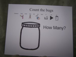Count the bugs Autism Educational