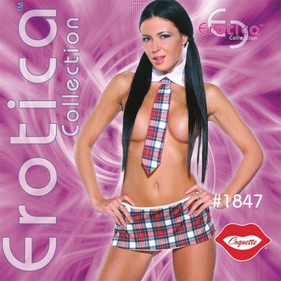 Sexy Naughty 3 Pc  Sexy School Girl Adult Costume