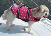Dog Life Jacket in Pink Polka Dot