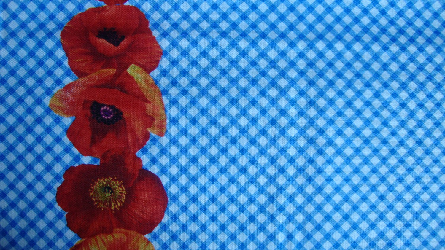 Bolt end wizard of oz magic poppy border blue