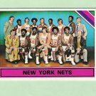 Julius Erving 1975-76 Topps Nets Team Card