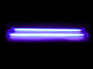 "12"" Dual Cold Cathode Light Kit - UV Black"