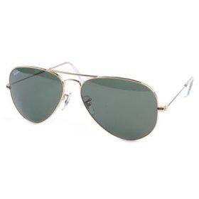 Sunshark Sun Glasses