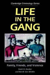 Life in The Gang- Family, friends, and Violence by Decker and Winkle