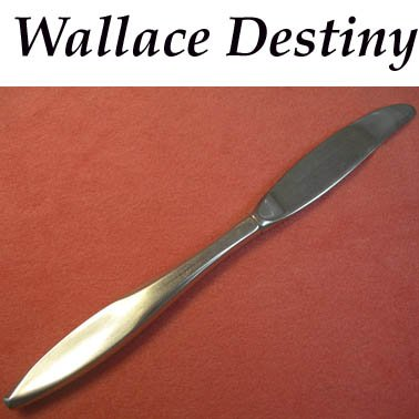 WALLACE SILVER DESTINY PLACE KNIFE STAINLESS FLATWARE SILVERWARE EPICURE
