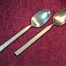STANLEY ROBERTS SRI TARQUIN 2 PLACE SPOONS STAINLESS FLATWARE SILVERWARE