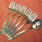 ONEIDA MY ROSE 5 SALAD FORKS & PIERCED JELLY SERVER COMMUNITY STAINLESS FLATWARE SILVERWARE