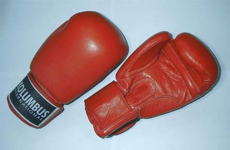 BOXING GLOVE 10 oz RED