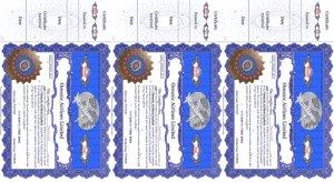 Business Card Certificate