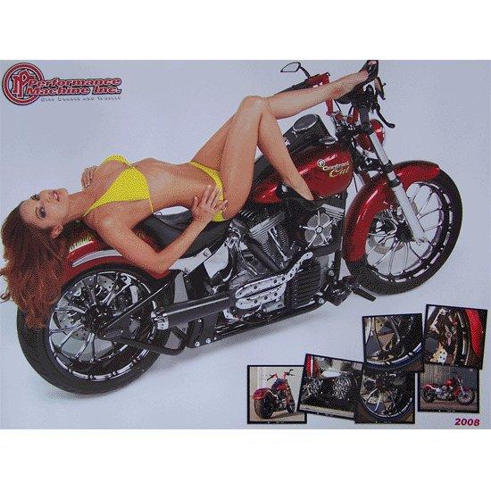 Performance Machine 2008 Biker Posters