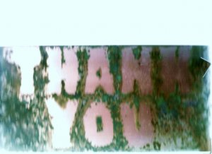 """Copper THANK YOU sign 6"""" x 12"""""""