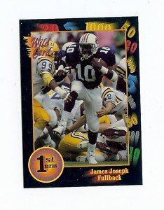 1991 Wildcard James Joseph Auburn Tigers sports cards football