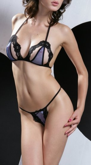 ~ Sheer Mini Set With Sexy Lace Trims ~