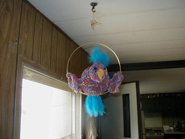 Eddie The Parrot