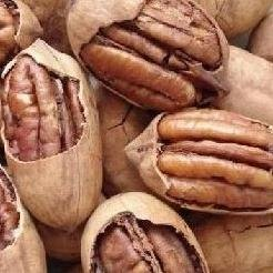 Natural Pecan;high nutrition;fresh;delicious food