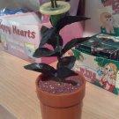 SP001 Condom Plant
