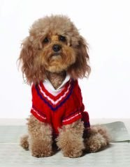 Large Dog Preppy Tennis Sweater - Red