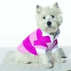 Small Dog Rugby Shirt - Pink