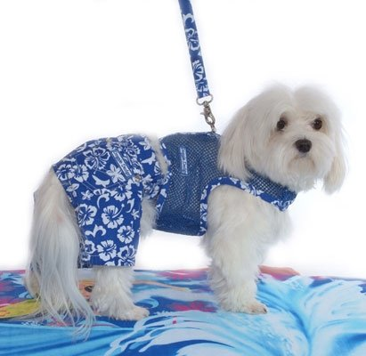 Large Hawaiian Netted Dog Harness With Leash - Royal Blue