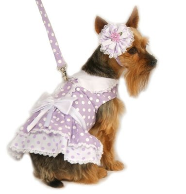 Small Polka Dot Dog Dress With Hat & Leash - Lavender